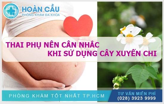 Thai phụ nên thận trọng và hỏi ý kiến bác sĩ khi dùng cây xuyến chi