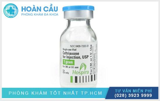 Thuốc Ceftriaxone được bào chế ở dạng bột pha tiêm