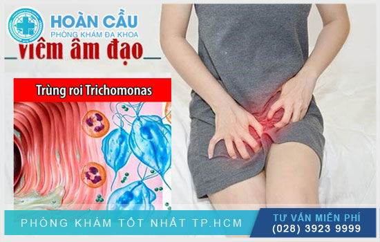 Nguồn lây nhiễm trùng roi Trichomonas