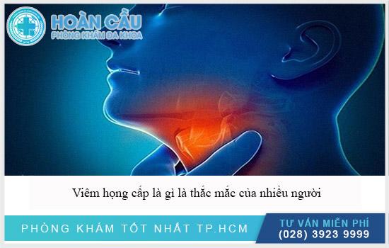 [Image: viem-hong-cap-la-gi-lam-sao-khi-bi-1.jpg]